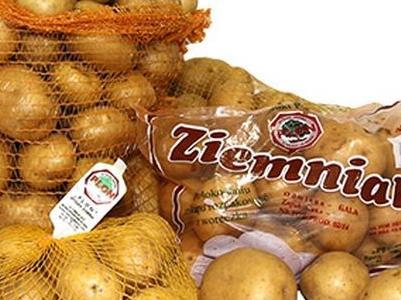 ziemniak 1